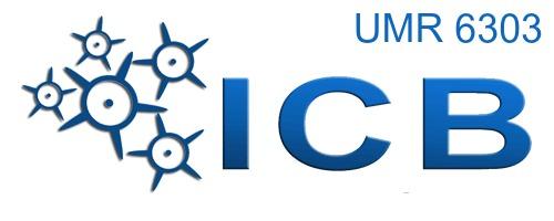 Equipe Spectroscopie Moléculaire, Processus Collisionnels et Application de l'ICB